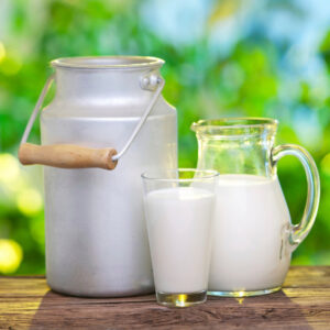 Fermented Raw Goat Milk for Your Dog's Gut Health