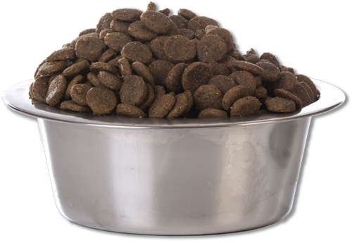 dry food in a bowl